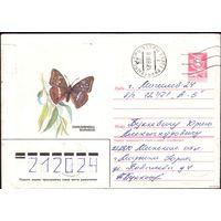 1985 год ХМК Переливница большая 85-527