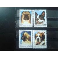 Бенин 2000 Собаки**