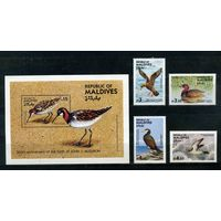 Мальдивы 1985. птицы. 4м. 1 блок