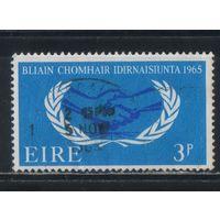 Ирландия Респ 1965 20 летие Международному сотрудничеству Эмблема #174