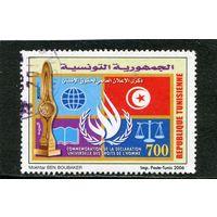 Тунис. День декларации прав человека