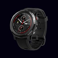 Умные часы Xiaomi Amazfit Stratos 3