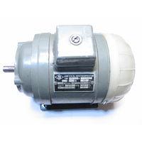 Электродвигатель короткозамкнутый тип АОЛ -11/4 120 Вт,220/380В,1400 обор/мин-цена снижена