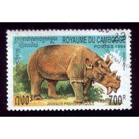 1 марка 1996 год Камбоджа Носорог 1438