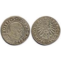 Грош 1531, Пруссия (ленник Польши), Альберт Гогенцоллерн. Вариант портрета с короткой бородой. Более редкий год, R1
