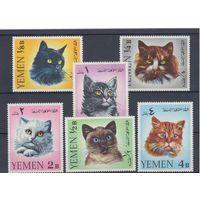 [258] Йемен 1965.Фауна.Кошки.