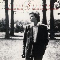 David Sylvian - Brilliant Trees (1984) / Words With The Shaman (1985) (2 в 1 Audio CD)