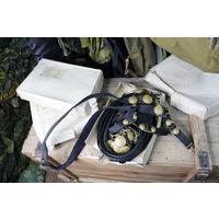 Ремень. Снаряжение кортиковое для офицеров ВМФ. СССР. с хранения, новые.