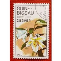 Гвинея-Бисау. Цветы. ( 1 марка ) 1989 года.