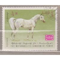 Лошади фауна Арабские лошади Йемен 1967 год лот 2