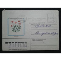 1982 клюква прошло почту