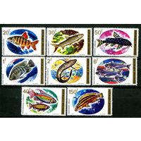Руанда - 1973г. - Рыбки - полная серия, MNH [Mi 577-584] - 8 марок