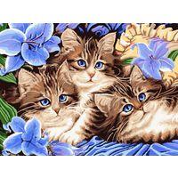 """Набор для рисования """"Котята"""""""