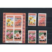 Танзания. Цветы